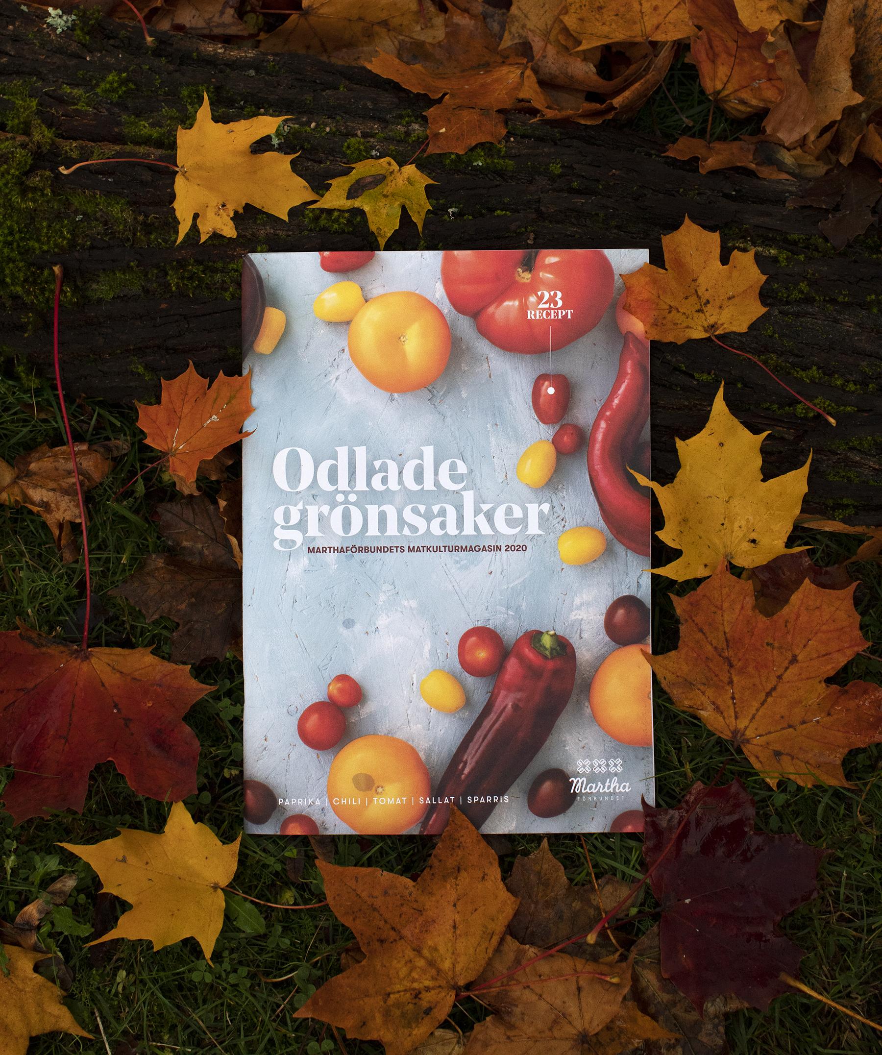 Odlade gronsaker matkulturmagasin